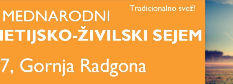 Zbiranje vzorcev vina za 43. odprto državno ocenjevanje – Vino Slovenija